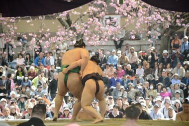 Two sumo fighters
