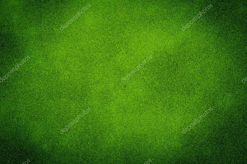 Fondo Verde Textura — Foto De