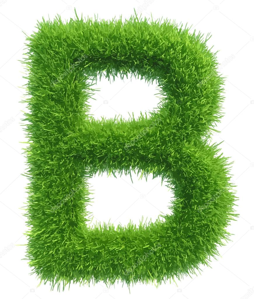 Vector capital letter B from grass on white background