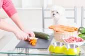 Fotografie Vorbereiten der natürliche Nahrung für Haustiere