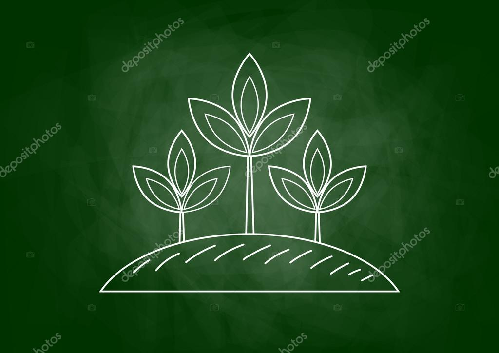 Dessin De Plante Sur Tableau Noir Image Vectorielle