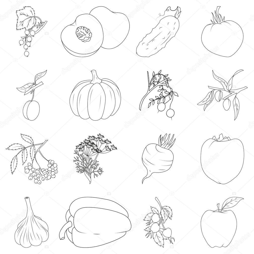 塗り絵果物と野菜のセット ストックベクター Blackspring1 61438759