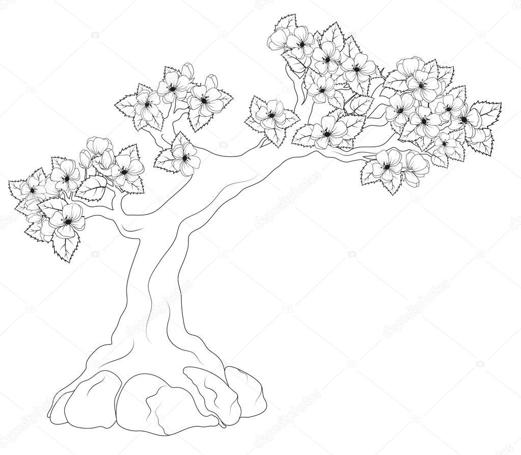 Boyama Kitabı çiçek Açan Ağaç Stok Vektör Blackspring1 71356105