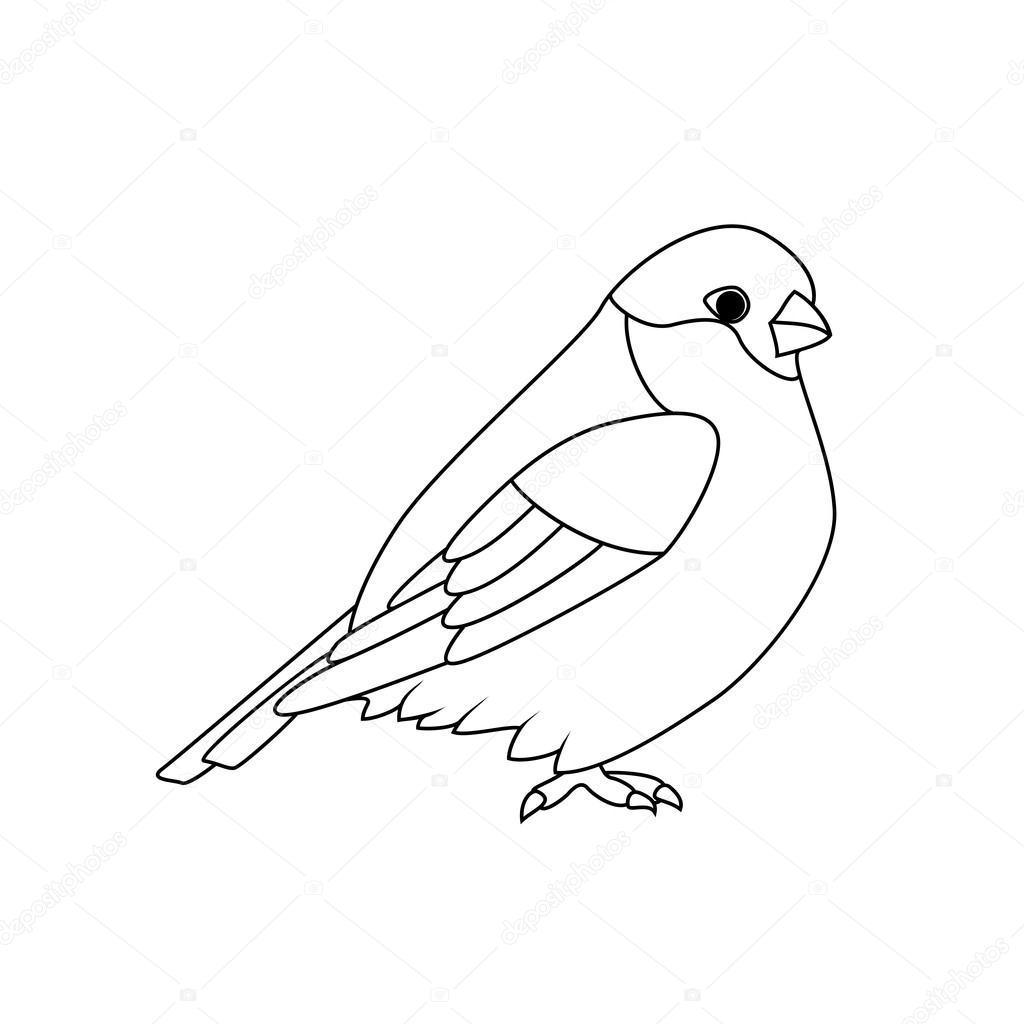 Boyama Kitabı şakrak Kuşu Stok Vektör Blackspring1 88656790