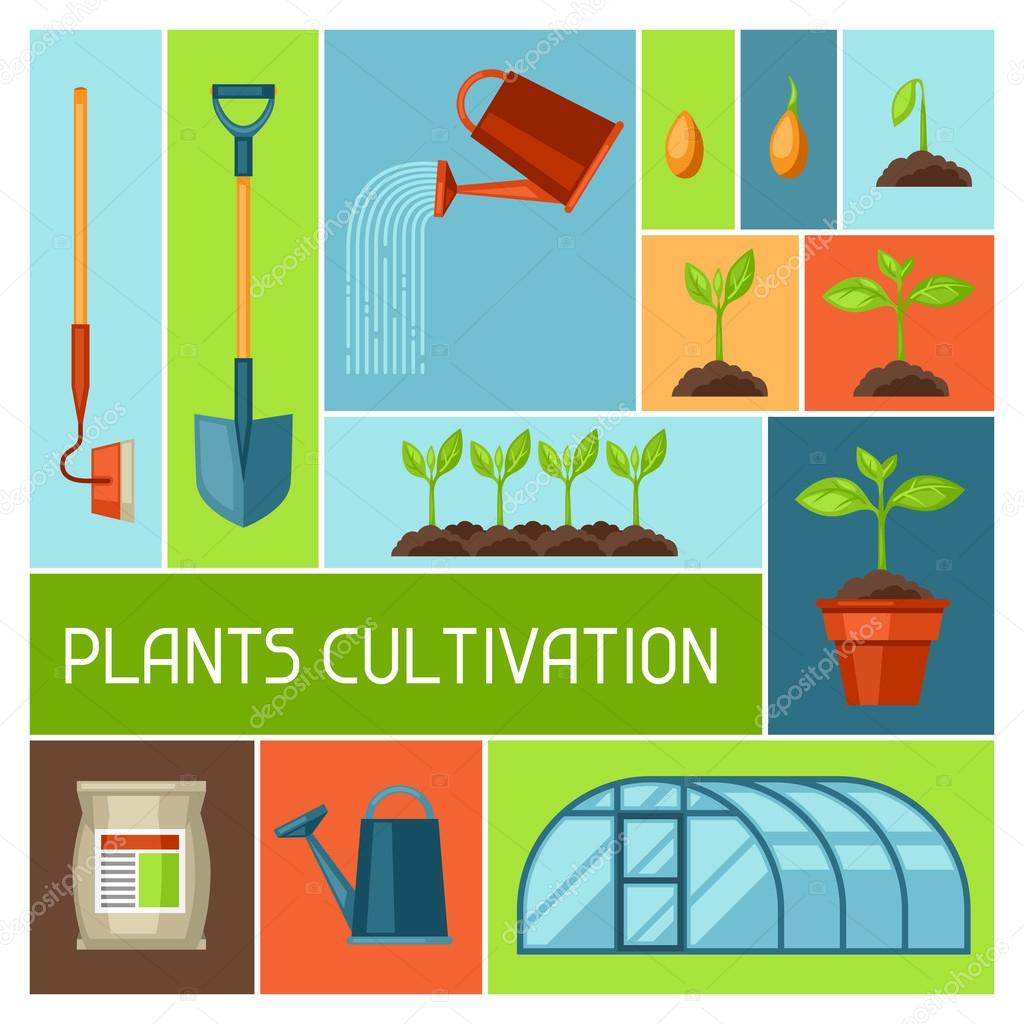 Background with agriculture objects. Instruments for cultivation, plants seedling process, stage plant growth, fertilizers and greenhouse
