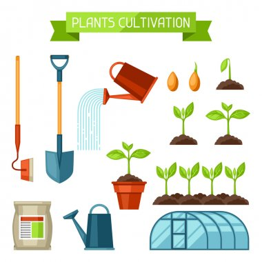 Set of agriculture objects. Instruments for cultivation, plants seedling process, stage plant growth, fertilizers and greenhouse