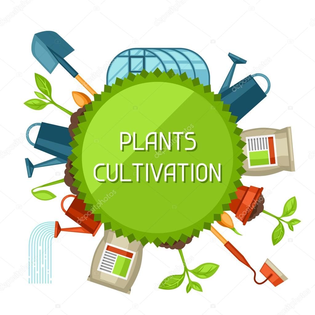 Concept with agriculture objects. Instruments for cultivation, plants seedling process, stage plant growth, fertilizers and greenhouse