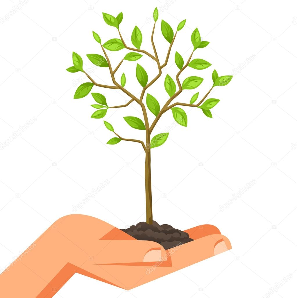Illustration of human hand holding green small tree. Image for booklets, banners, flayers, article and social media