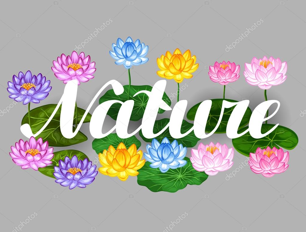 Natural background with lotus flowers and leaves. Image for design on t-shirts, prints, decorations brochures, websites