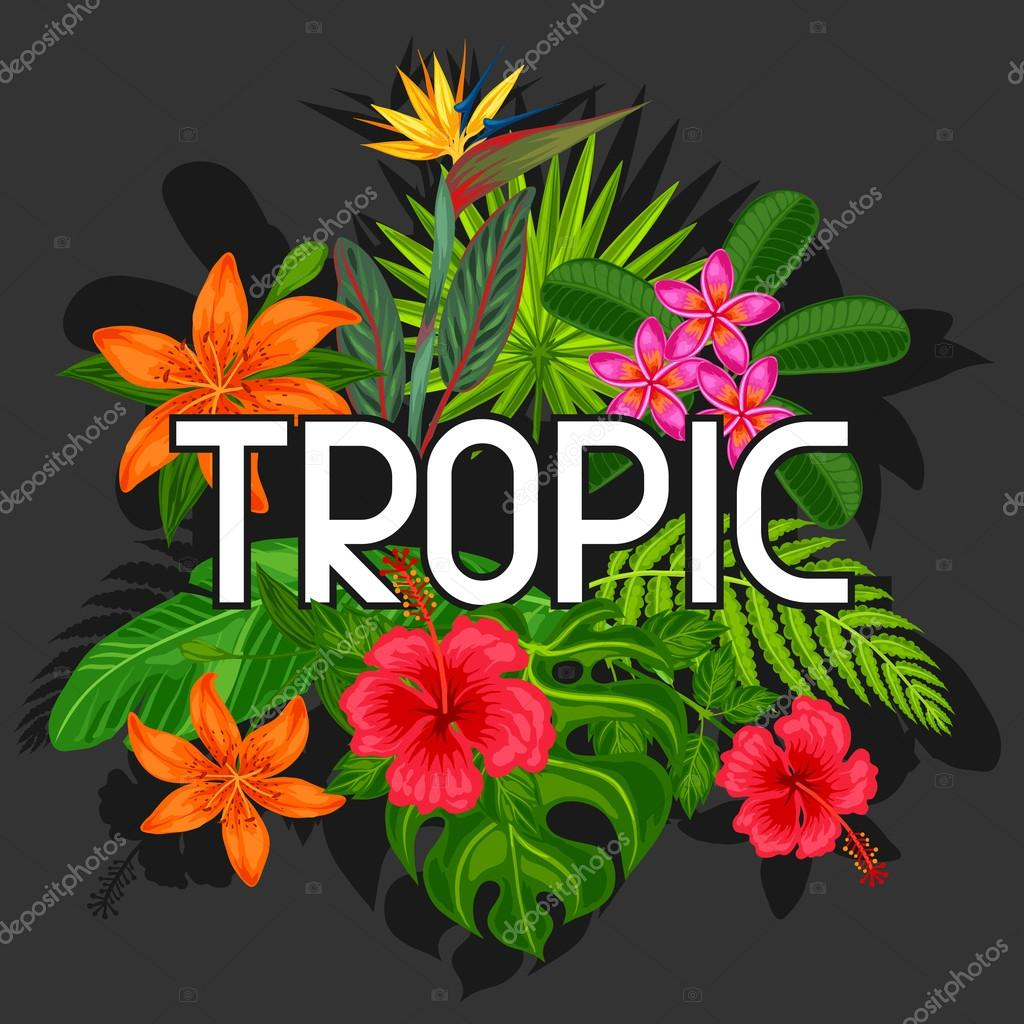 Background with stylized tropical plants, leaves and flowers. Image for advertising booklets, banners, flayers, cards, textile printing