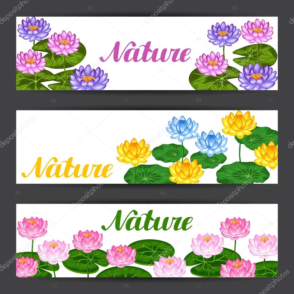 Natural banners with lotus flowers and leaves. Design for cards, flayers, brochures, advertising booklets
