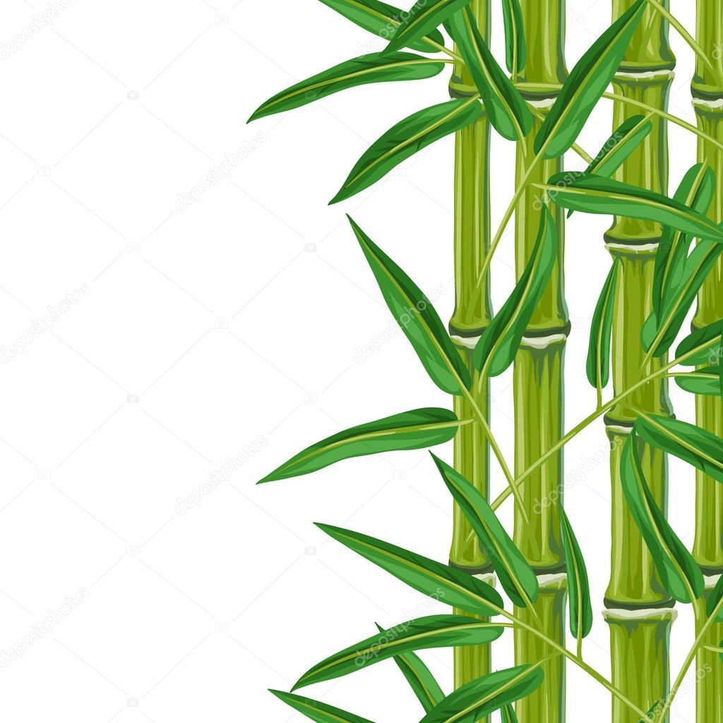 seamless border with bamboo plants and leaves background made