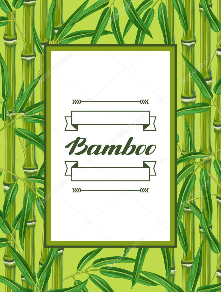 Frame with bamboo plants and leaves. Design for cards, flayers, brochures, advertising booklets
