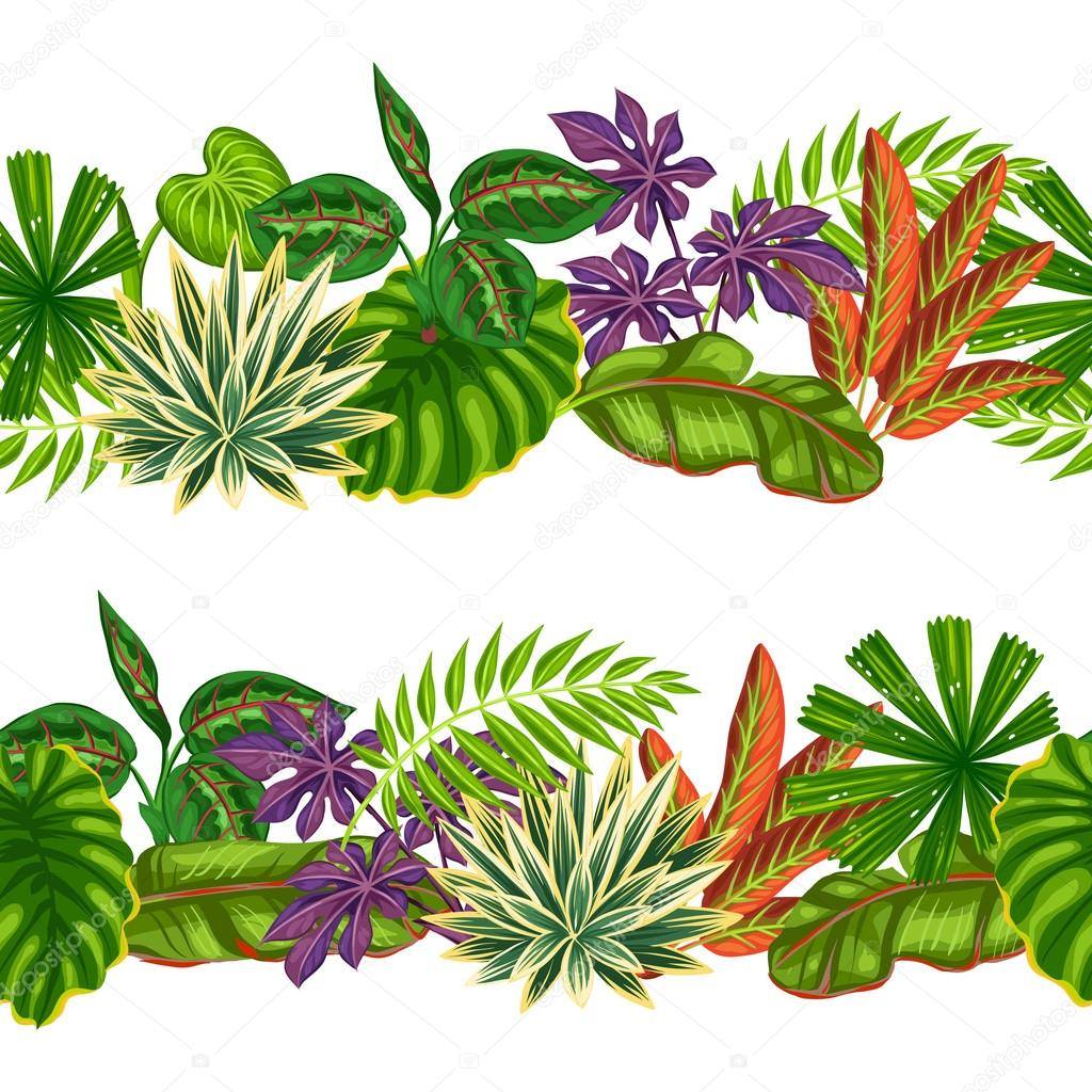 Seamless borders with tropical plants and leaves. Background made without clipping mask. Easy to use for backdrop, textile, wrapping paper