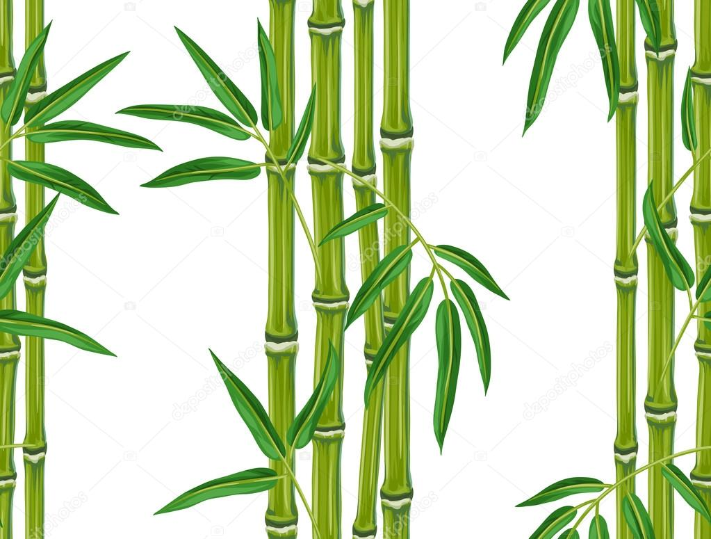 seamless pattern with bamboo plants and leaves background made