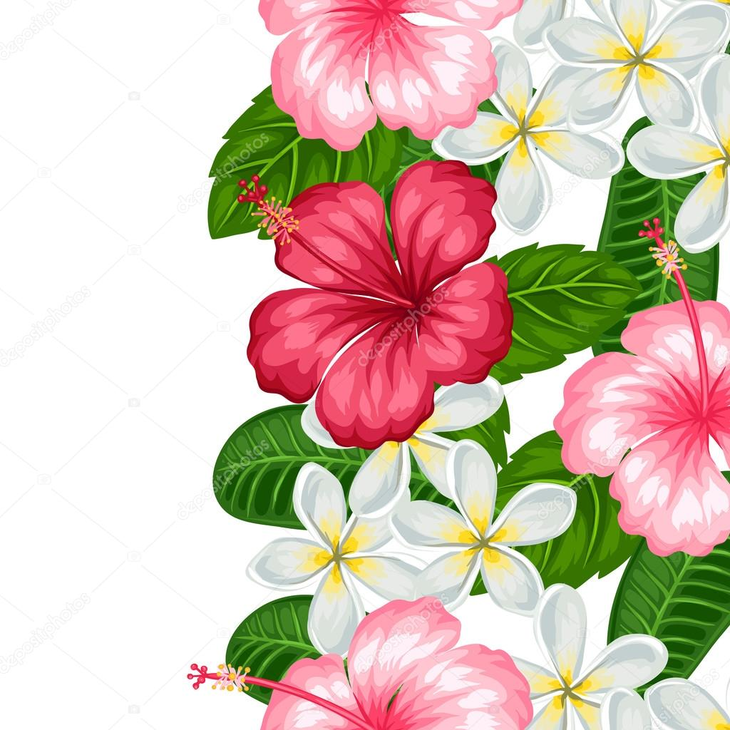 Seamless Border With Tropical Flowers Hibiscus And Plumeria