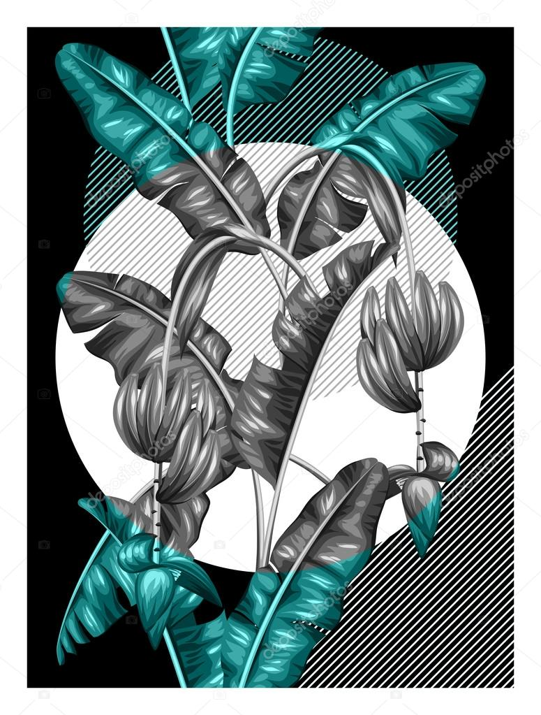 Poster with banana leaves. Decorative image of tropical foliage, flowers and fruits. Design for advertising booklets, banners, flayers, cards