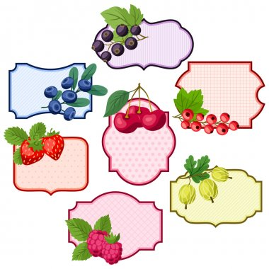 Set of various badges, labels with berries.