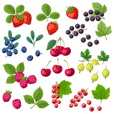 Set of various stylized fresh berries.