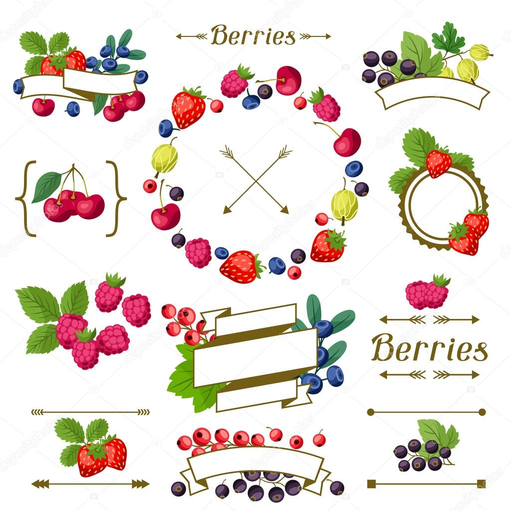 Set of various ribbons, labels with berries.