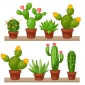 Kolekce abstraktní kaktusy v květináč na policích