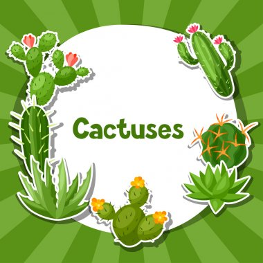 Cactuses and plants abstract natural background design