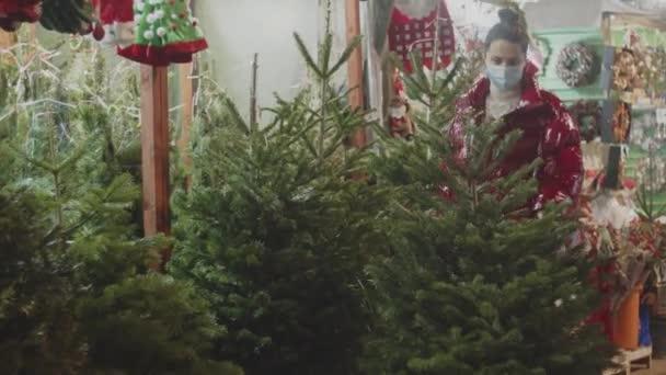 Egy lány orvosi maszkban egy karácsonyfát keres. Panned 4k videó kiváló minőségű felvételek.
