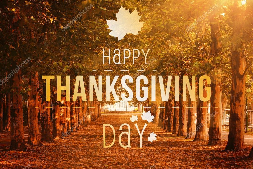 8th annual thanksgiving day - HD2000×1333