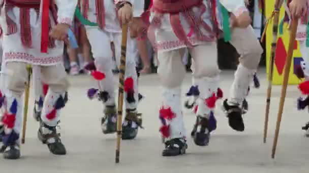 Romanian traditional dance at the International Folklore Festival