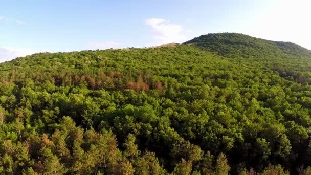 smíšené lesy, letecký pohled