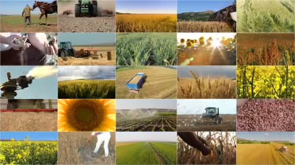 sestřih výběr zemědělství