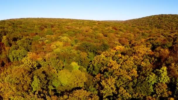 Divoké lesy v barvách podzimu