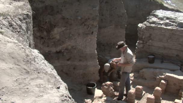 Noviodunum archaeological project