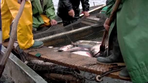 tradiční rybolov