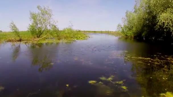 Jezero plné bílých leknínů v pohybu