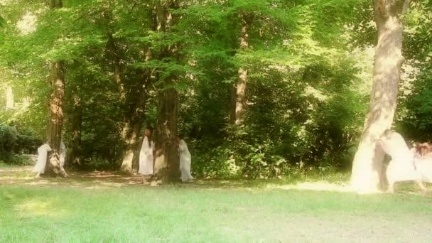 Tündérek az erdő