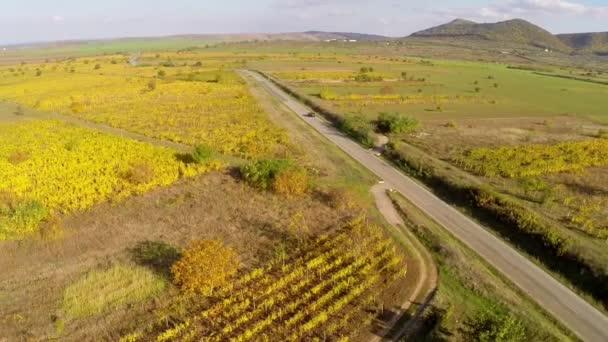 Venkovské silnici přes vinice v barvách podzimu, letecký pohled