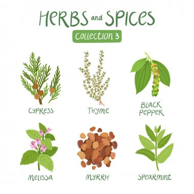Herbs and spices collection 3