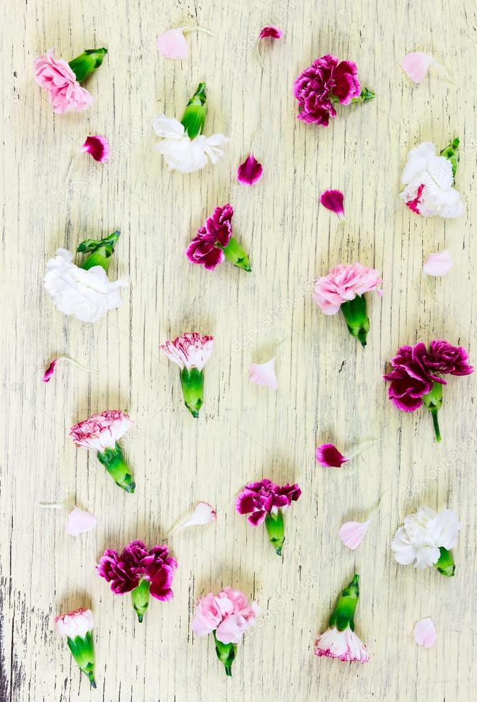 Flat lay composition. Carnation flowers on wooden background.