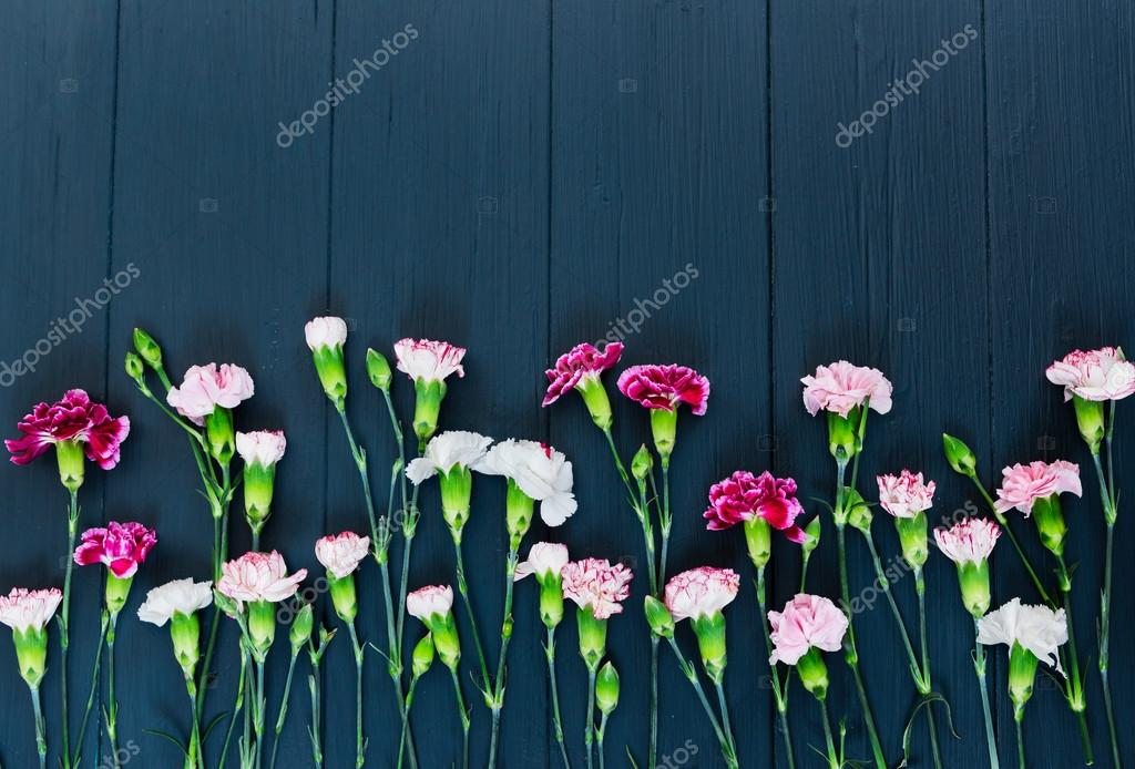 Carnation flowers on wooden background. Flat lay.