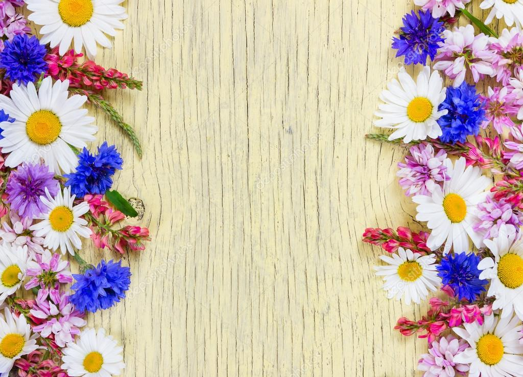 Meadow flowers. Flat lay. Top view.