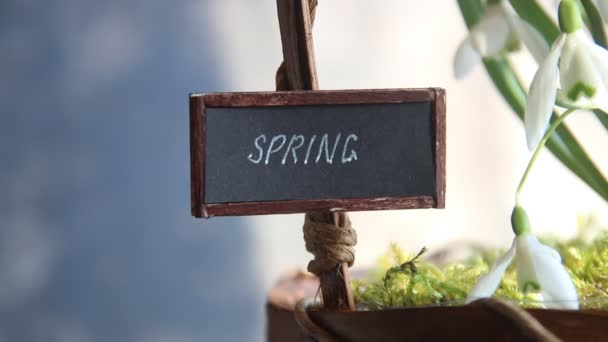 spring text and snowdrops