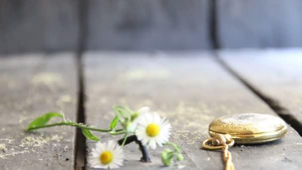 jarní květiny a kapesní hodinky - květinové pozadí