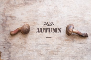 Hello autumn idea mushrooms and text