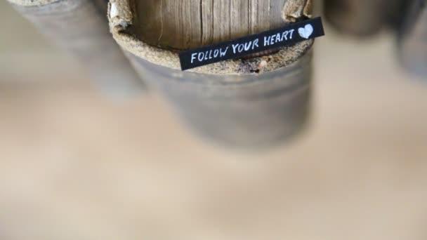 následovat své srdce
