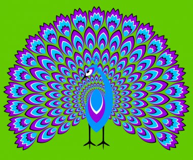Blue peacock (optical illusion of movement)