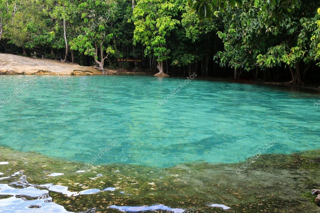 Natural pool at Emerald Pool (Sa Morakot) in Krabi