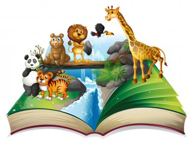 Book of wild animals at waterfall