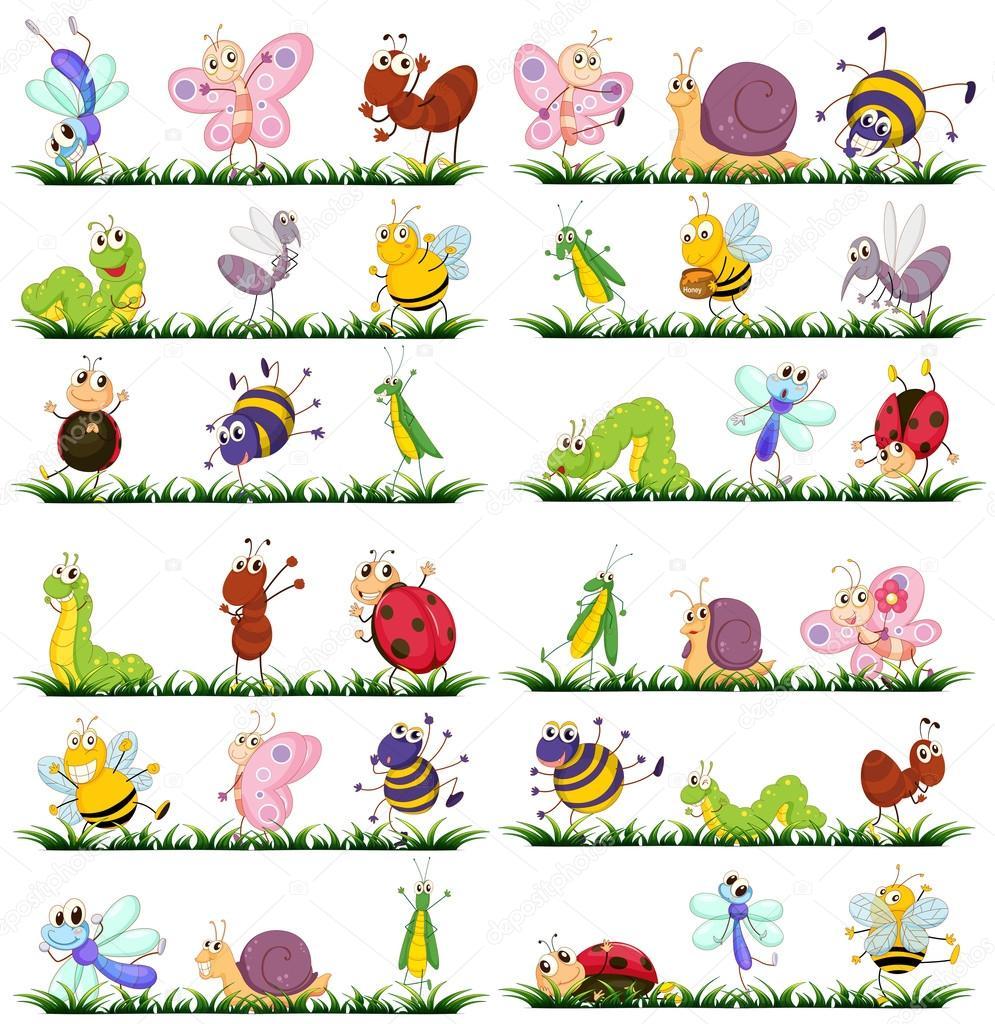 Diversi tipi di insetti su erba vettoriali stock - Diversi tipi di erba ...