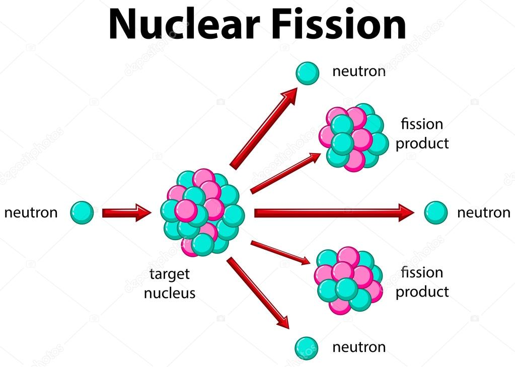 diagram showing nuclear fission \u2014 stock vector � interactimages Nuclear Fission of Uranium 235 diagram showing nuclear fission illustration \u2014 vector by interactimages